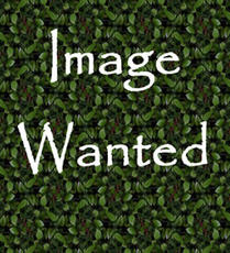 Image Wanted