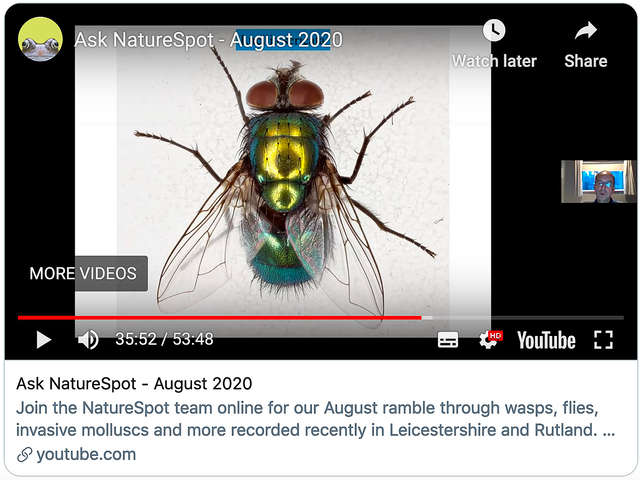 Ask NatureSpot August 2020