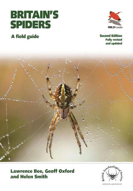 Britains Spiders