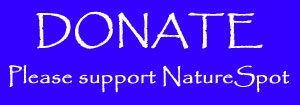 please donate to NatureSpot
