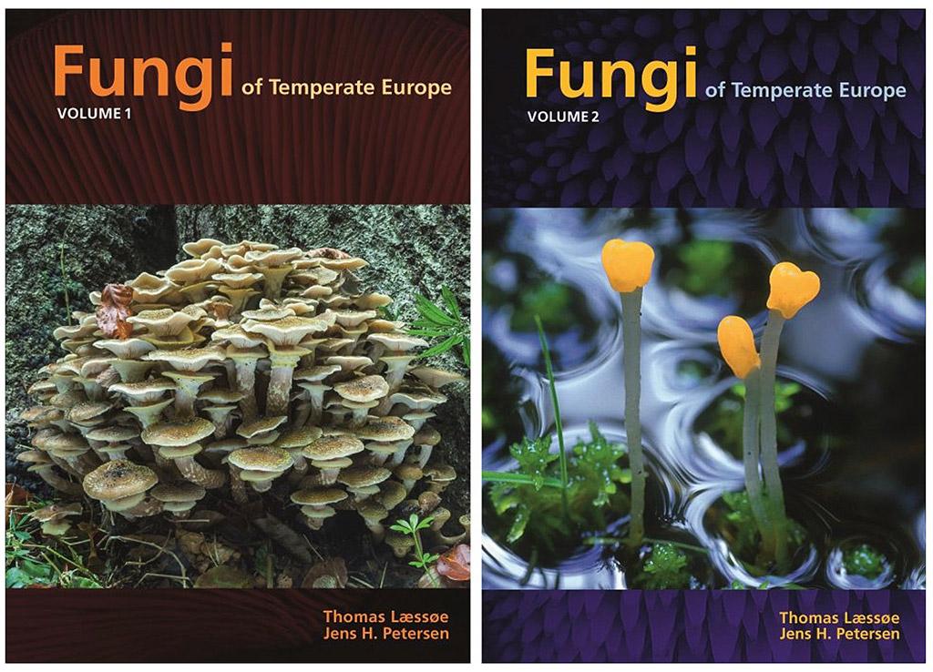 Fungi-of-Temperate-Europe