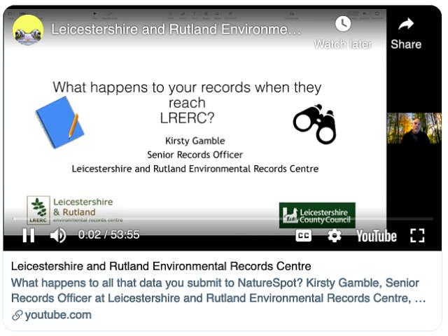 LRERC YouTube