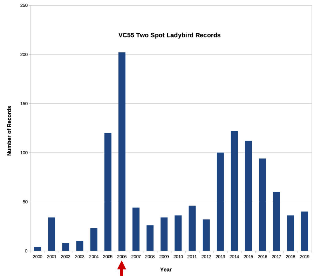 Ladybirds Graph