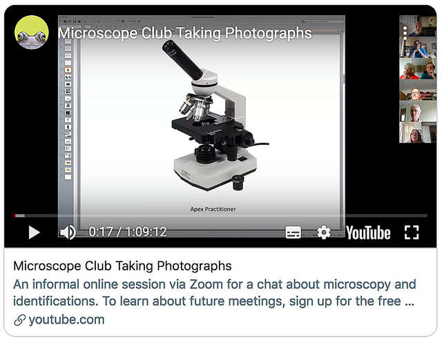 Microscope Club Taking Photographs