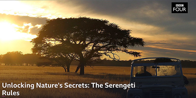 Serengeti Rules