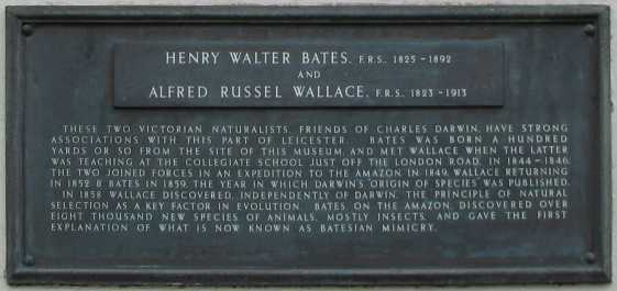Plaque commemorating A R Wallace and H W Bates, New Walk Museum, Leicester